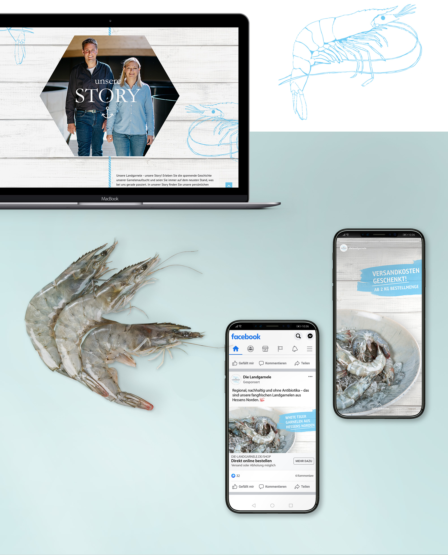 Website auf Macbook und Social Media Kanäle auf Smartphones