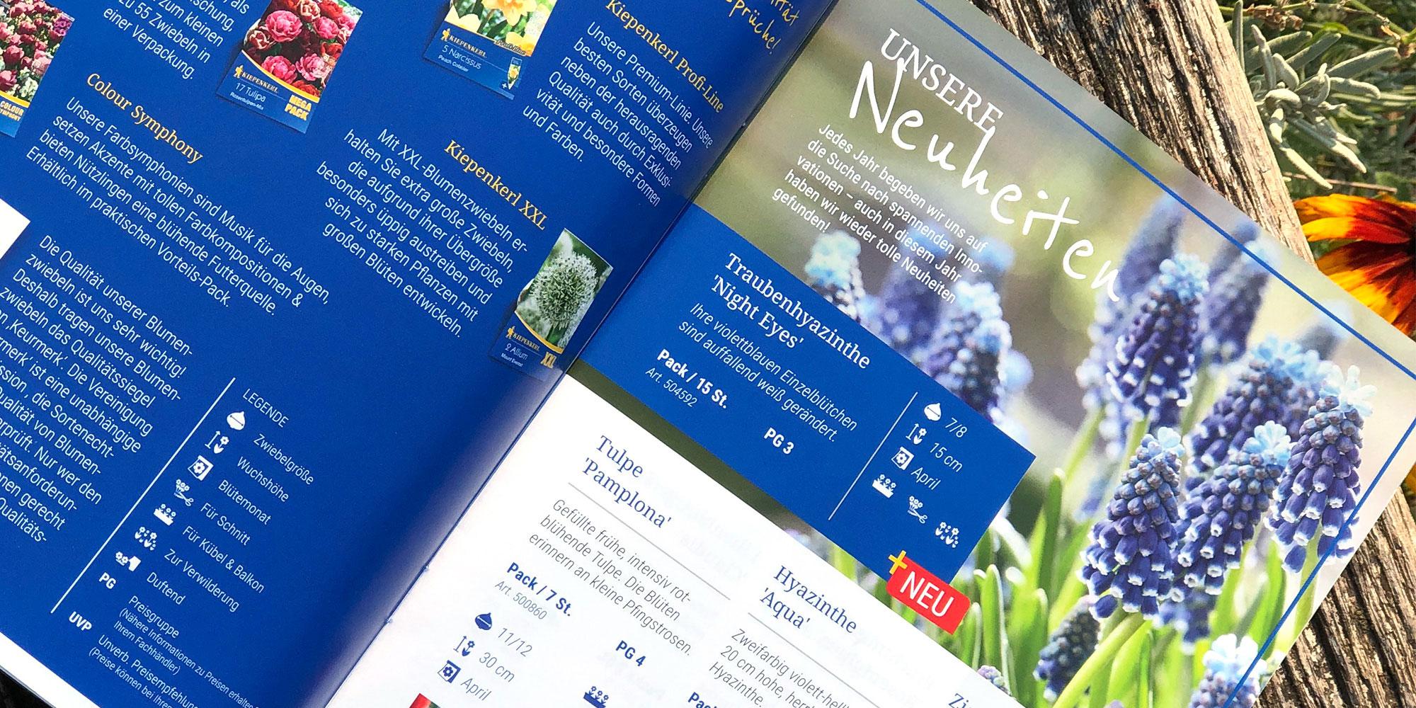 Legende und Neuheiten der Kiepenkerl Blumenzwiebelbroschüre